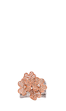 Alex Mika Gabriella Ring in Rose Gold