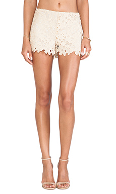Anna Sui Trellis Lace Shorts in Cream