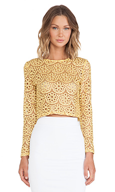 Alexis Laiden Lace Crop Top in Floral Amber