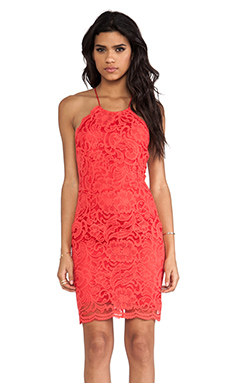 Bardot Jen Dress in Melon