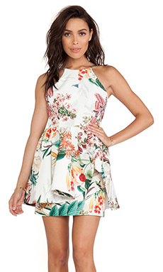 Cameo Winter Wind Dress in Botanical Print