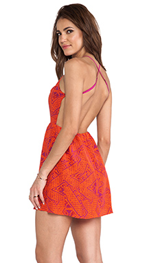 Dolce Vita Aaela Dress in Fuchsia Print