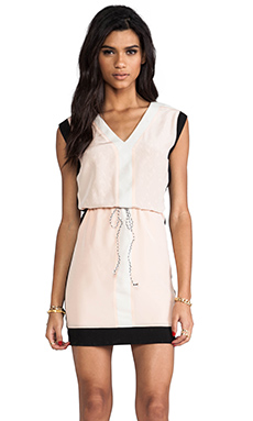 Greylin Cynthia Blocked Dress in Shell Peach