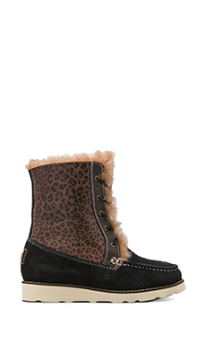 Australia Luxe Collective Chukka Boot with Sheepskin in Black/Leopard