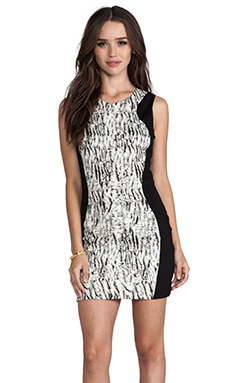 Parker Contour Dress in Zebra