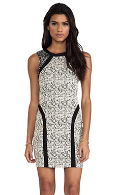 Parker Jagger Dress in Black Cream