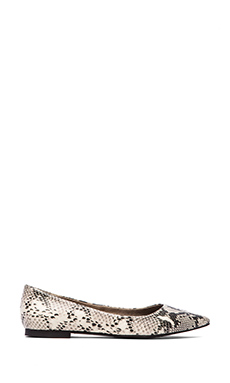 Seychelles Well Known Flat en Black & White Python