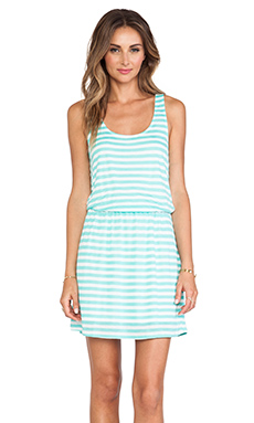 Splendid Stripe Mini Dress in Waterfall