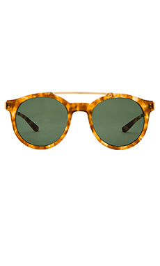 Stussy Luca Sunglasses in Tortoise