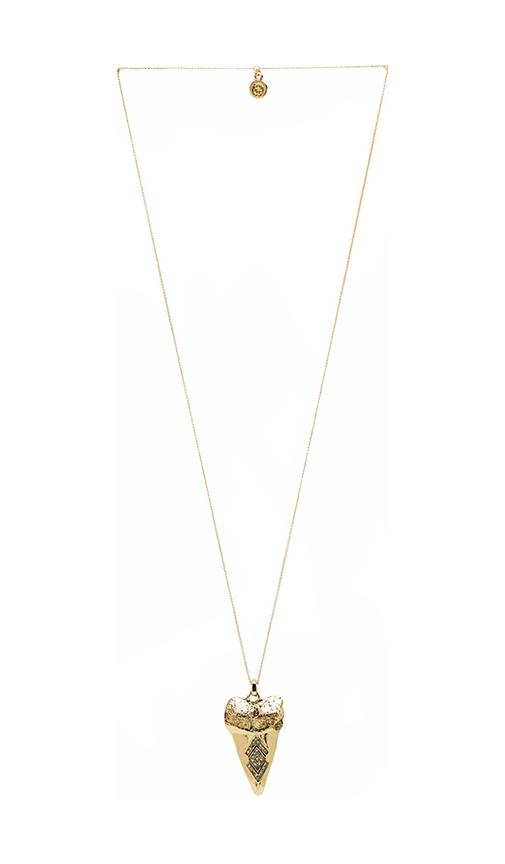 House of Harlow Tribal Tooth Pendant Necklace in Metallic Gold